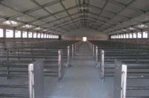 Ангары для сельского хозяйства (зернохранилища, свинарники) под ключ.