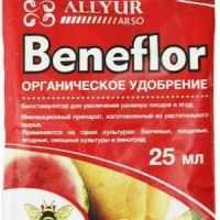 Бенефлор 25мл Аллюр