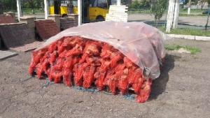 Дрова в сетках оптом от 300 шт. Древесный уголь.