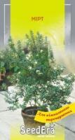 Комнатные цветы Мирт 5шт SeedEra