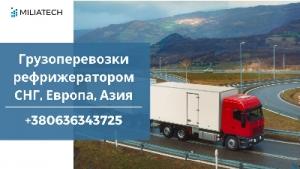 Перевозки / Рефрижераторные контейнеры