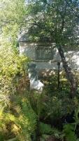 Продам дачу 10 соток, 25 км от Киева Экологически чистый район.
