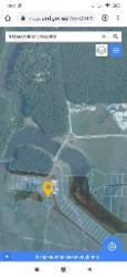 Продам земельну ділянку в с. Козлин