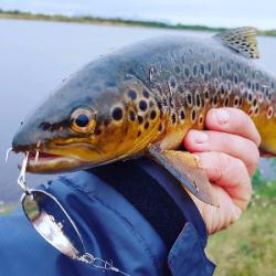 Рыболовные крючки оптом - лучшие цены, высокое качество