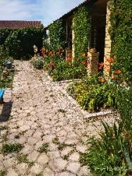 Сдам жилье в летний период на Белосарайской косе-Азовское море.