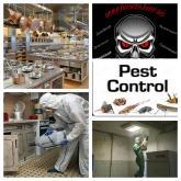 Уничтожение вредных насекомых, грызунов.