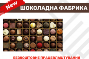 Упаковщик на шоколадную фабрику