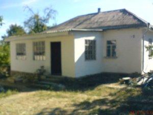 Дом в селе на участке 1 гектар