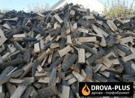 Дрова купити в Горохові Drova-plus
