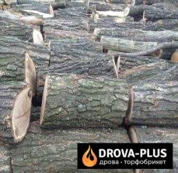 Drova-plus – дрова торфобрикет в Луцьку, Ківерцях та області