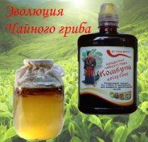 Комбуча десертный - концентрат чайного гриба, 0,5 л, 1 л