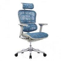 Кресло компьютерное Ergohumen Plus Luxury