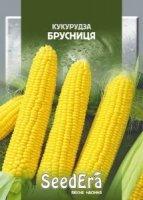 Кукуруза сахарная Брусничка 20г SeedEra