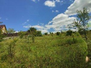 Продам земельну ділянку в Бармаках