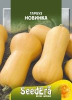 Тыква Новинка 20г SeedEra