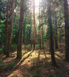 Земельний участок в заповедной зоне Собственник